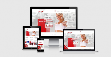 Website Flex Health Club